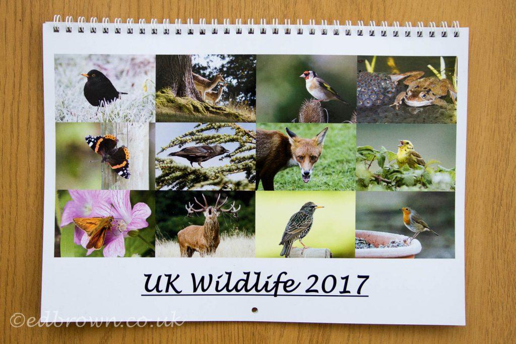 wildlife calendar 2017